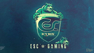 Counter-Strike 1.6 ESC-Gaming